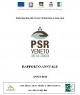 RAPPORTO ANNUALE 2020